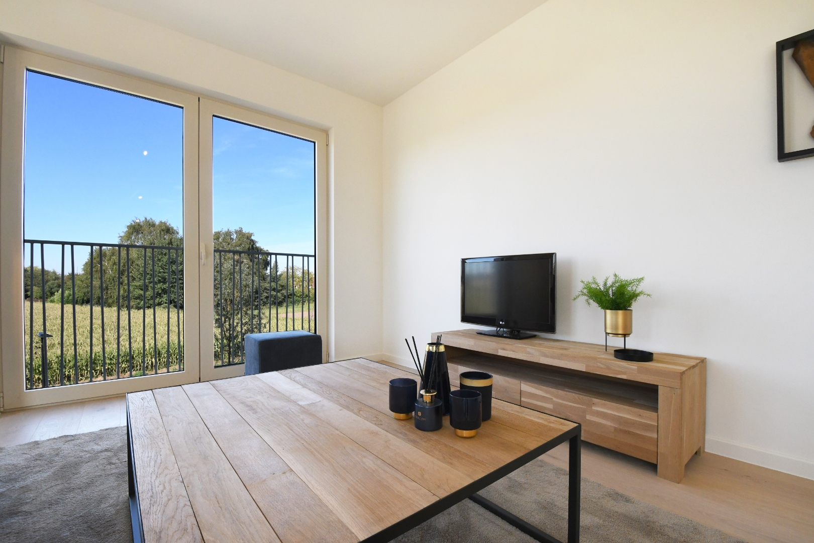 Apartment with one bedrooms and unique view